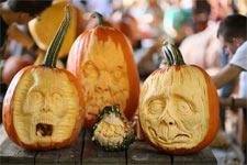 pumpkins_NYBG_225